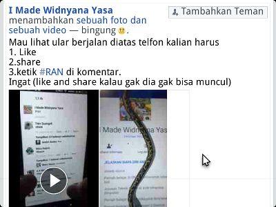 status hoax facebook muncul ular