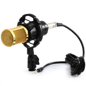 Review dan harga Microphone BM-800