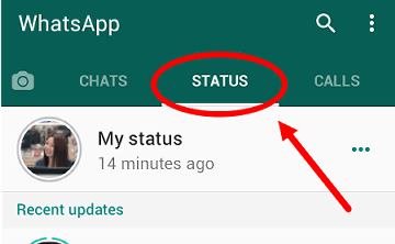 cara melihat status di whatsapp