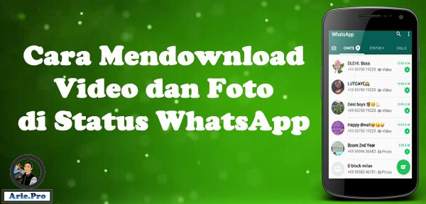 cara menyimpan download foto video story whatsapp status