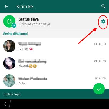 cara setting status whatsapp agar terlihat oleh orang tertentu saja