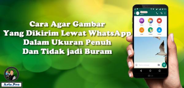 cara kirim gambar ukuran penuh di WhatsApp tidak terkompresi