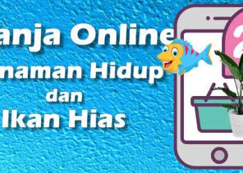 Apa aman beli tanaman dan ikan secara online ini pengalaman saya