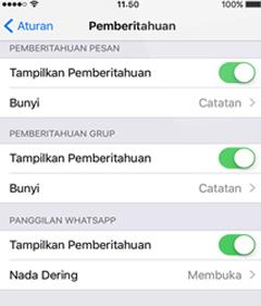 cara mengatasi pesan whatsapp tidak masuk di iphone