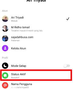 cara agar terlihat offline di aplikasi messenger