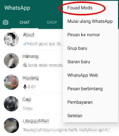 cara menggunakan whatsapp mods terlihat offline padahal online