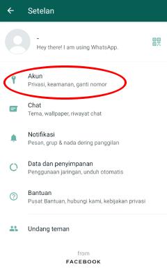 cara wa terlihat offline padahal online di whatsapp resmi official